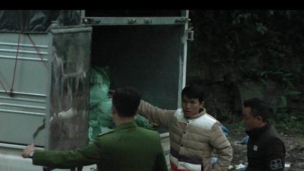 Lào Cai: Thu giữ 2 tấn thịt lợn bốc mùi hôi thối tại Mường Khương