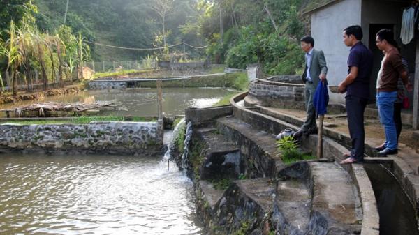 Về nơi thuần hóa 'cá thần' - Linh hồn của sông Chảy