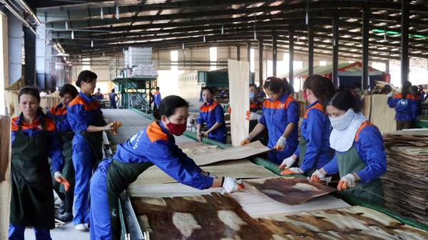 Lào Cai: Mức thưởng Tết Mậu Tuất cao nhất là 80 triệu đồng