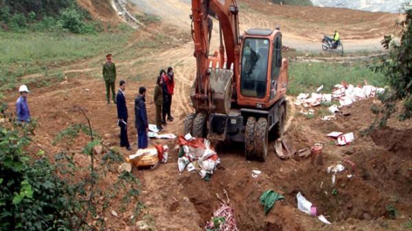 Lào Cai: Tiêu hủy hơn 1 tạ pháo, 2 tấn xương, thịt động vật không rõ nguồn gốc