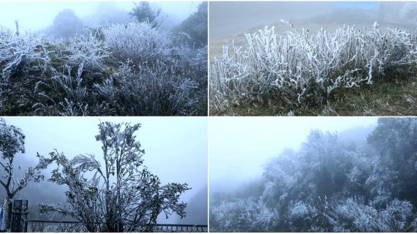 Sáng nay, băng tuyết tiếp tục phủ trắng đỉnh đèo Ô Quý Hồ - Lào Cai