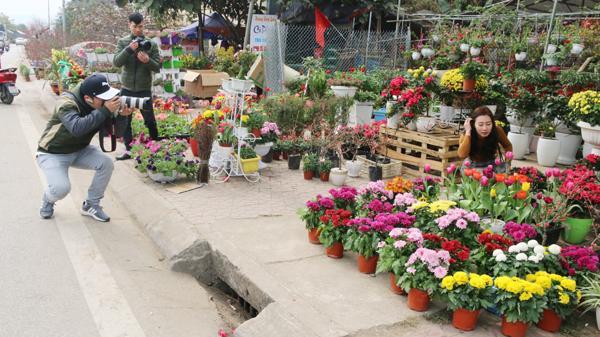 Điều đặc biệt ở chợ hoa Xuân Lào Cai 2018