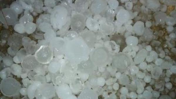 Lào Cai xuất hiện giông lốc kèm mưa đá trắng xóa mặt đất