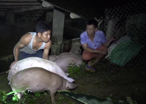 Nước sông vượt báo động 3, hơn 80 hộ dân ở Lào Cai bị ngập