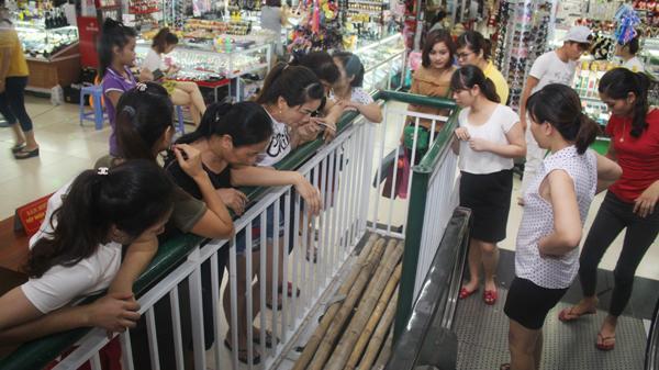 Lào Cai: Bé 6 tuổi bị thương nặng do rơi xuống tầng âm chợ A Cốc Lếu