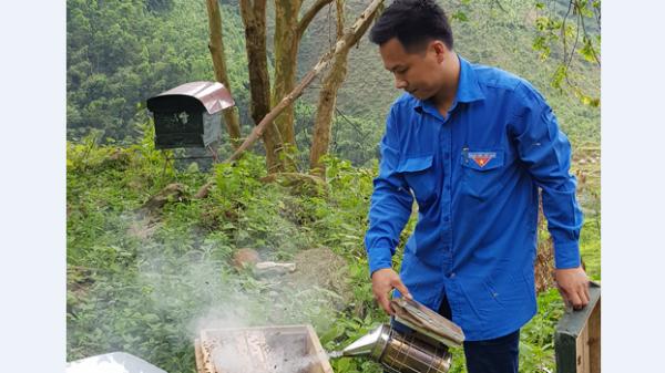 Bỏ bằng đại học lên rừng nuôi ong, thanh niên Thanh Sơn - Phú Thọ kiếm hàng trăm triệu/năm