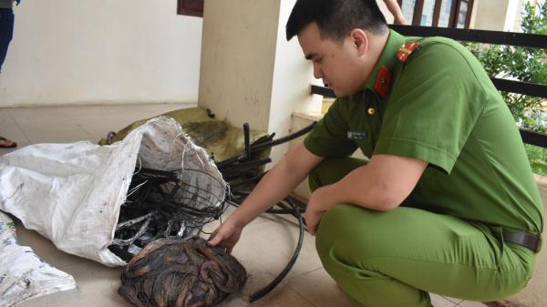 Bắc Giang: Bắt giữ ổ nhóm chuyên trộm cắp dây cáp viễn thông