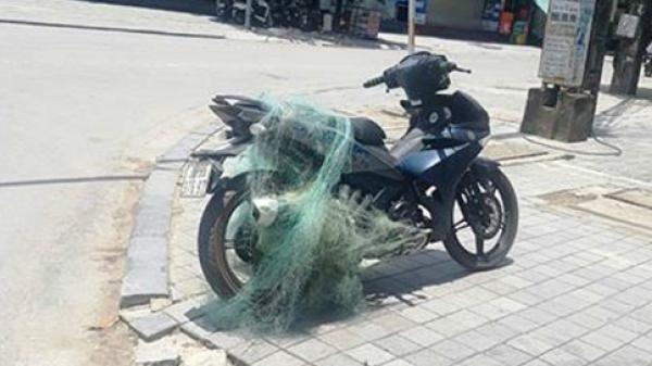 Cảnh sát giao thông quăng lưới bắt người vi phạm giao thông
