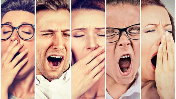 Chắc là bạn không biết: Ngáp chính là một trong những bí ẩn lớn nhất của con người