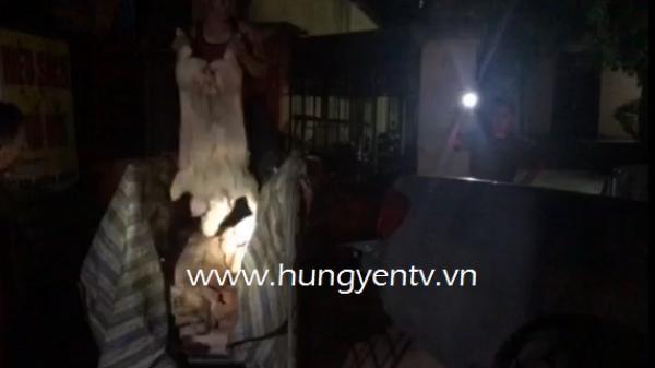 Hưng Yên: Bắt vụ vận chuyển hơn 500kg lợn chết mang đi tiêu thụ