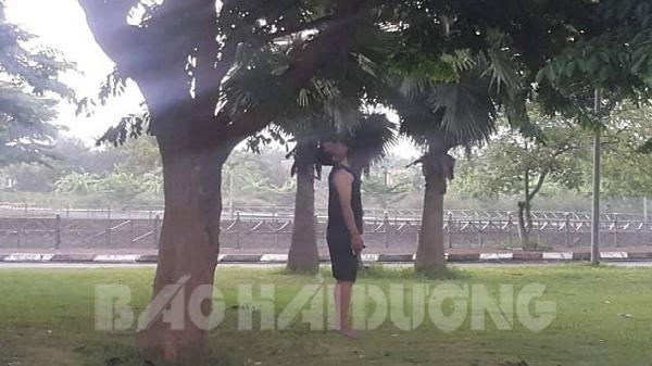 NÓNG: Đi tập thể dục, thất kinh phát hiện thi thể nam thanh niên trong tư thế treo cổ trên cây ở Hải Dương