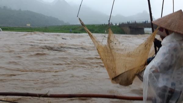 Văn Chấn: PBT Đảng ủy xã và 6 người khác c,hết do mưa lũ, 30 nhà sập, 7 xã bị cô lập