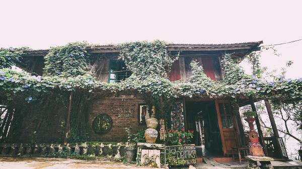 4 quán cafe rất xinh mà đã lên Sapa thì nhất định phải ghé