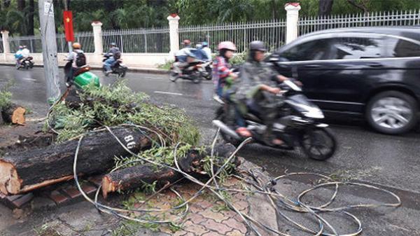 Yên Thế (Bắc Giang): Xe máy vướng dây điện ngang đường, vợ tử vong, chồng thương nặng