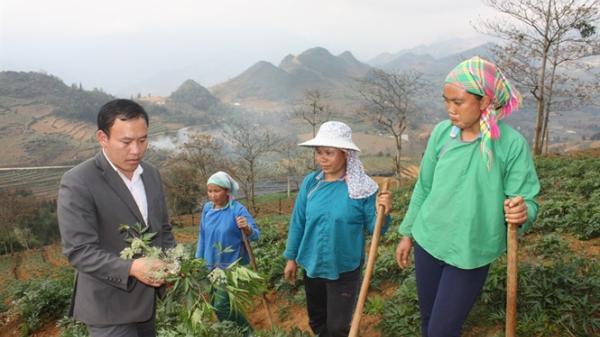 Lào Cai: Những người con đi học rồi trở về giúp dân