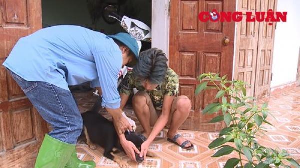 Phát hiện nhiều ổ bệnh dại bùng phát tại Phú Thọ