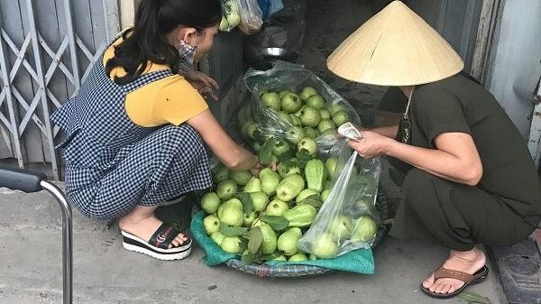 Bằng cách này, vợ chồng lão nông người Hưng Yên đều đặn thu 100 triệu đồng/tháng