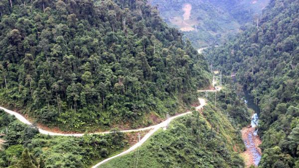 Lào Cai: Thu ngân sách gần 72 tỷ từ dịch vụ môi trường rừng