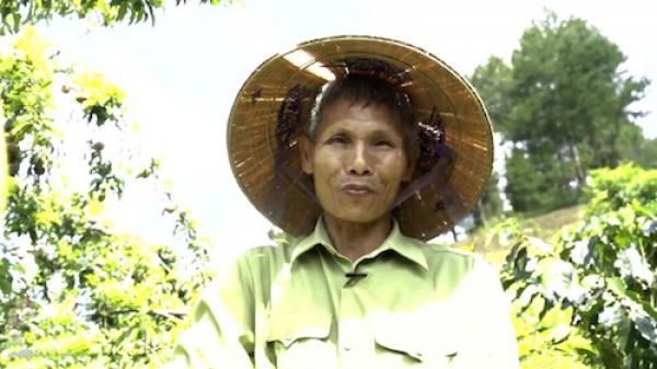 Sơn La: Lão nông U70 làm giàu trên đất sương muối nhờ trồng xen canh