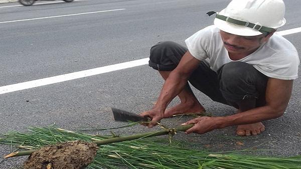 Săn lộc rừng đãi nhà giàu của dân Lào Cai