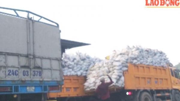 Vụ ồ ạt quặng lậu vượt biên ở Lào Cai: Vẫn tiếp tục hoạt động di chuyển, xóa dấu vết