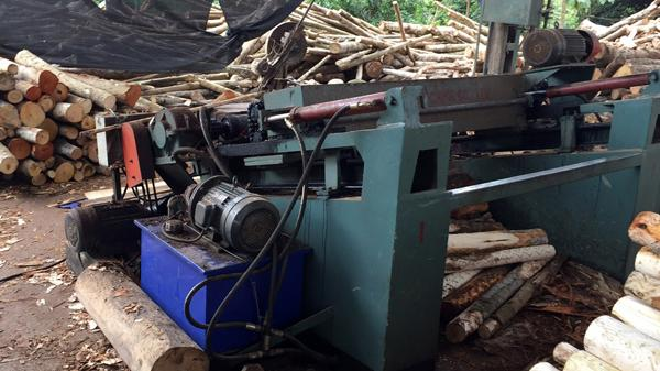 Lào Cai: N.ạn n.hân bị cuốn vào máy bóc gỗ cần sự giúp đỡ