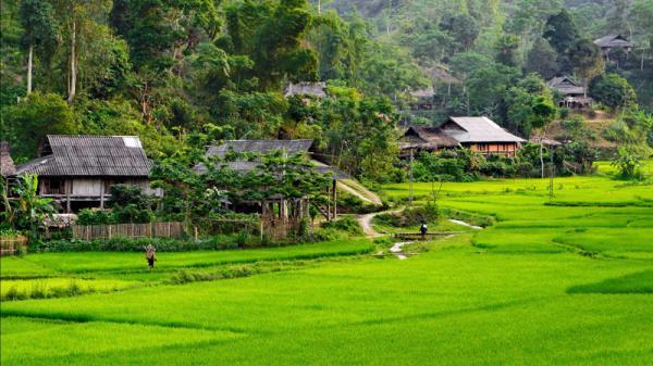 Lên Sơn La ngắm Vân Hồ - 'người con gái đẹp' vùng Tây Bắc