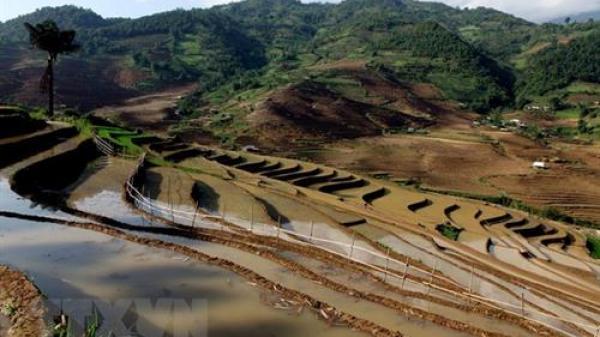 Bắc Bộ rét đậm, rét hại, Lai Châu cần đề phòng sạt lở đất và lũ quét