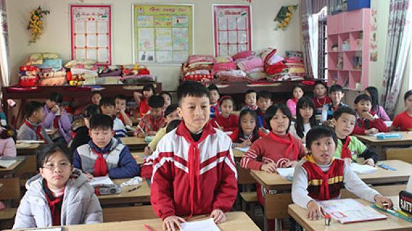 Nguyễn Trường Giang - Học sinh lớp 4 chăm chỉ, học giỏi nổi tiếng ở Lai Châu