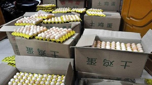 Hải quan Lào Cai: Bắt giữ cá tầm và trứng gà lậu