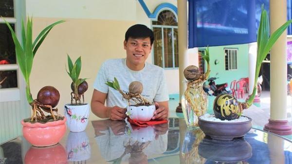 Bonsai dừa độc đáo, sản phẩm khởi nghiệp của chàng trai 9X Bến Tre
