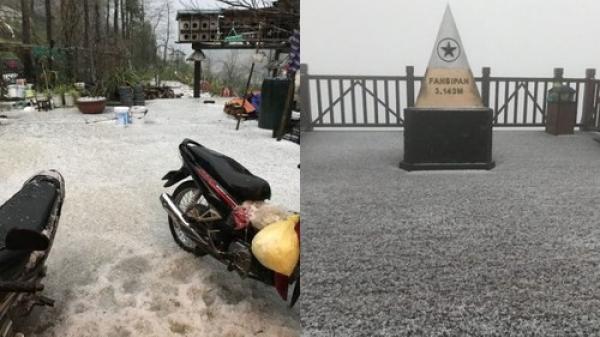 Kỳ thú đỉnh Fansipan (Lào Cai) đẹp ngỡ ngàng sau khi xuất hiện mưa băng