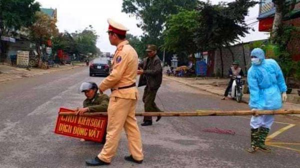 Lào Cai: Kiểm soát chặt dịch t.ả lợn châu Phi