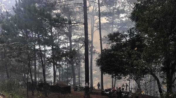 Khoảng 33.000ha rừng U Minh Hạ (Cà Mau) có nguy cơ c.háy cao