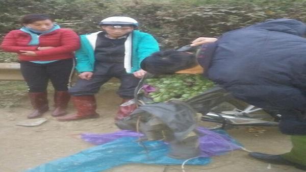 Cặp vợ chồng ở Lào Cai rủ nhau mua hơn 20 kg cây t.huốc p.hiện làm quà biếu