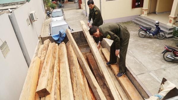 Bát Xát (Lào Cai) xử phạt đối tượng khai thác gỗ trái phép 30 triệu đồng