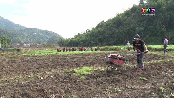 Thu nhập 180 triệu đồng/ha từ sản xuất nông nghiệp CNC ở Bắc Hà (Lào Cai)