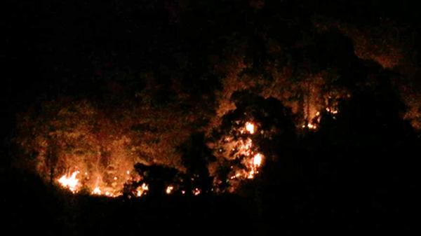 CLIP: Bảo Thắng (Lào Cai) dập tắt đám c.háy rừng dữ dội tại thôn Giao Bình