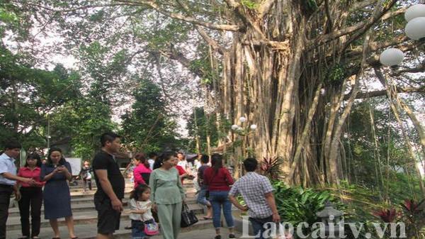TP Lào Cai đón gần 43.000 lượt khách trong dịp nghỉ lễ 30/4 và 1/5