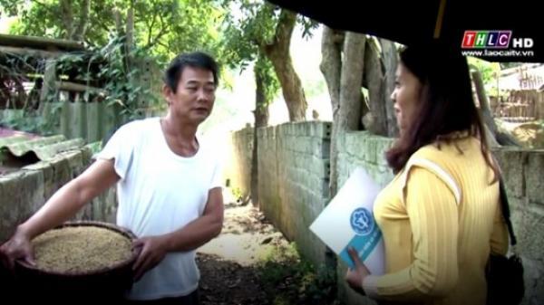 Lào Cai số người tham gia BHXH tự nguyện chỉ đạt ở con số khiêm tốn