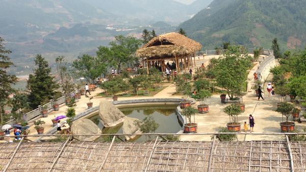 Ấn tượng đồi hoa hồng cổ lớn nhất Sa Pa (Lào Cai)