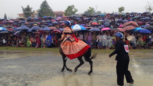 Nữ cũng có thể trở thành nài ngựa trong cuộc thi 'Vó ngựa cao nguyên trắng' Bắc Hà (Lào Cai) năm nay