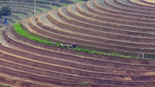 Về Bát Xát (Lào Cai) ngắm ruộng bậc thang mùa nước đổ