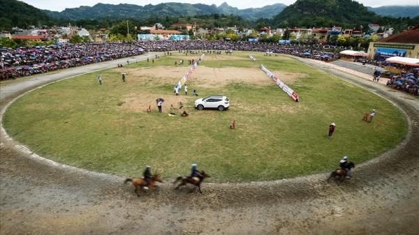 Cuộc đua gay cấn nhất năm của những chú ngựa thồ Bắc Hà (Lào Cai)