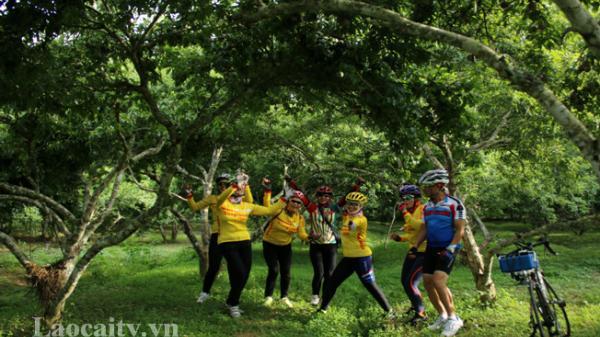 Gần 7 vạn lượt khách du lịch đến tham quan, trải nghiệm Festival Bắc Hà (Lào Cai)