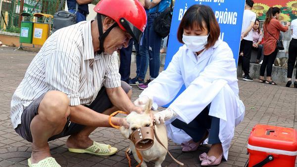 Lào Cai: Chủ quan không tiêm phòng, 1 người t.ử von.g do bệnh dạ.i