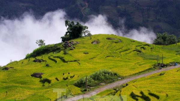 Ngắm cảnh sắc 'thiên đường' ruộng bậc thang hùng vĩ ở Y Tý (Lào Cai)