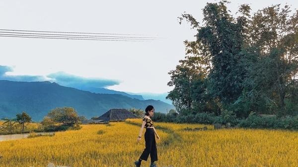 Theo chân cô gái 9X ngắm mùa lúa Y Tý (Lào Cai) chín đẹp như thơ