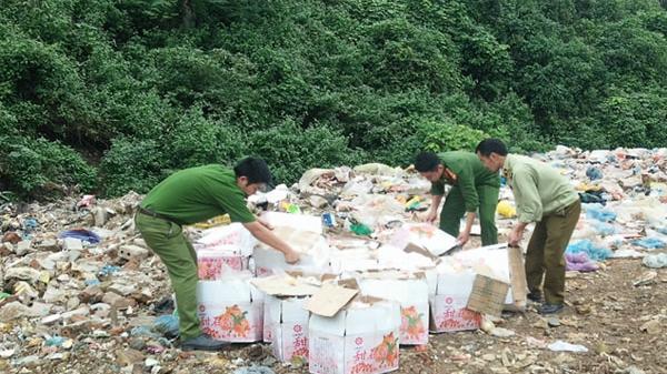 Văn Bàn (Lào Cai): Tiêu hủy 575 kg quả lựu không rõ nguồn gốc