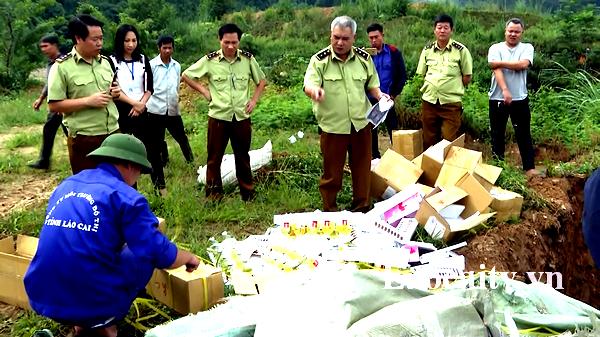 Lào Cai: Tiêu hủy lô hàng thực phẩm chức năng nhãn hiệu Phiên hồng hoa Nanguang